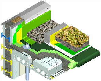 Quad-Lock Insulating Concrete Forms ICF Green Roof Integration Graphic